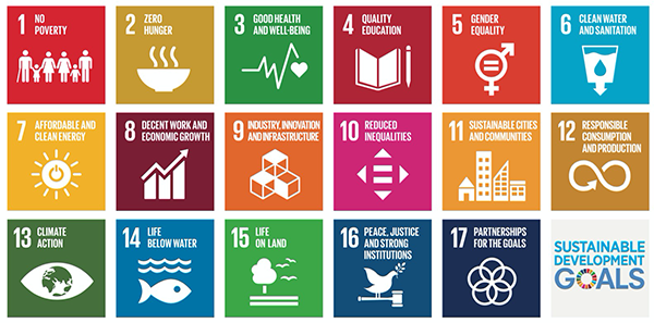 Figure 1 — UN Sustainable Development Goals (SDGs). (Source: United Nations.)