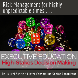 High-Stakes Decision Making Virtual Executive Education