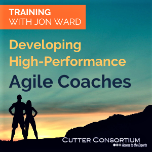 Agile Coaches