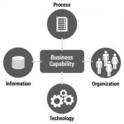 Four components of a business capability.