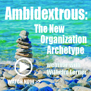 Ambidextrous: The New Organization Archetype